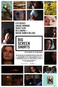 Big Screen Shorts